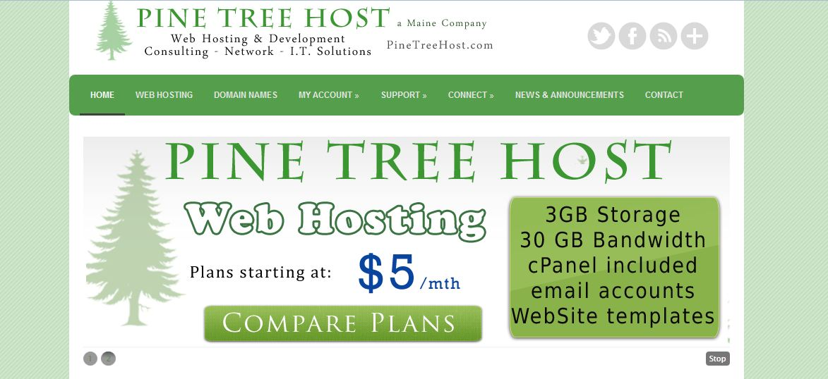Pine Tree Host